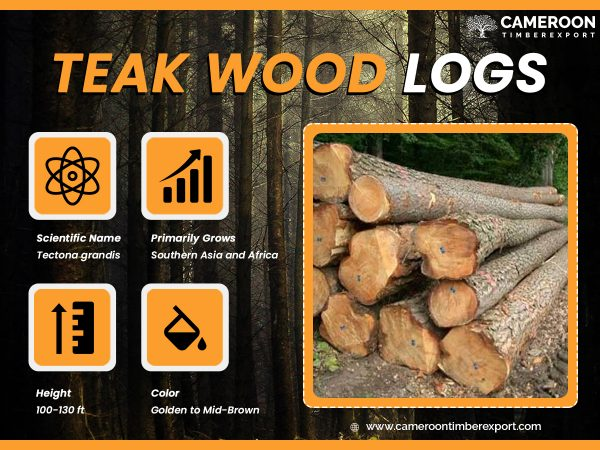 teak wood log specification