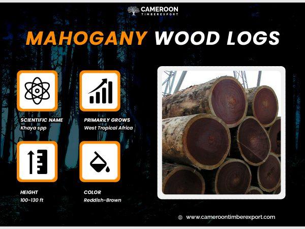mahogany wood logs