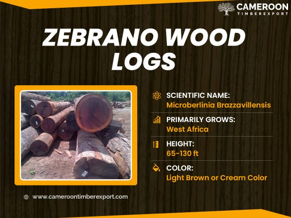zebrano wood logs