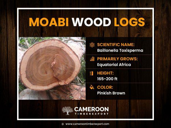 moabi wood logs