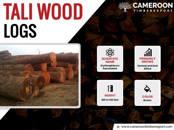tali wood logs