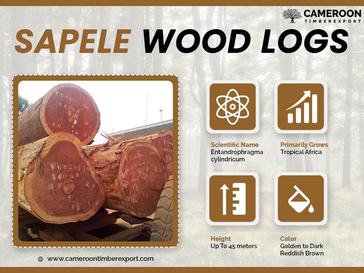 sapele wood properties