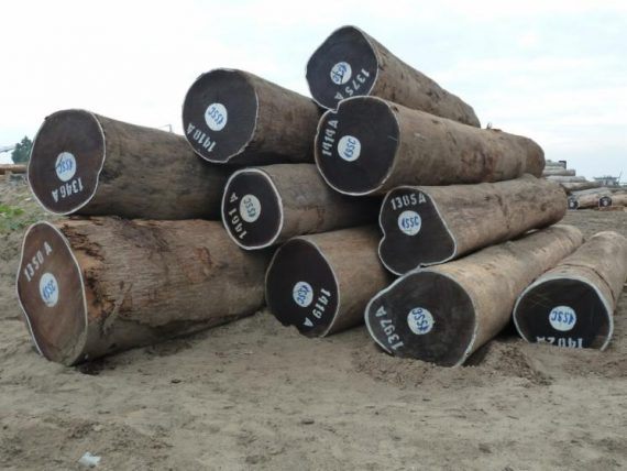 Wenge Round Logs