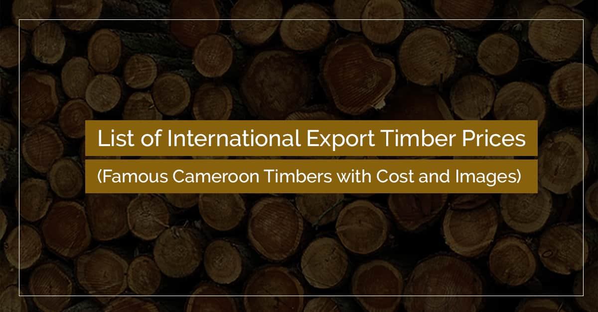 export timber prices