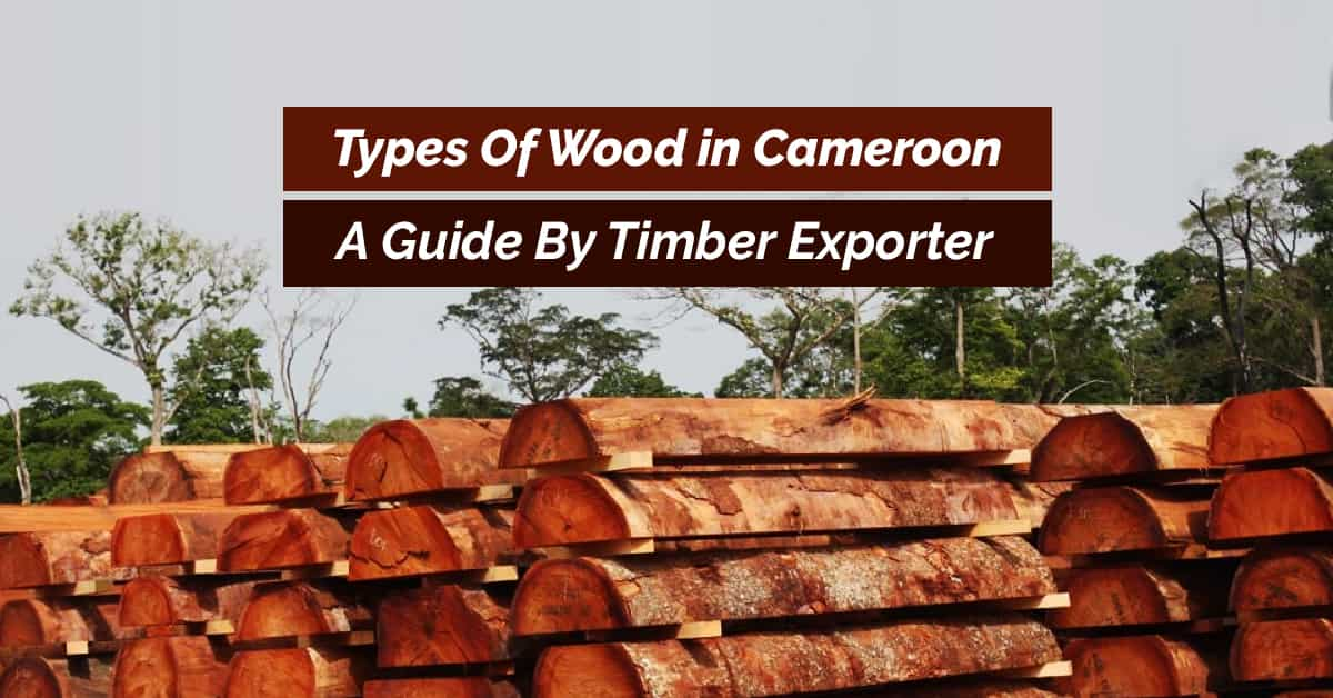 types of wood in Cameroon