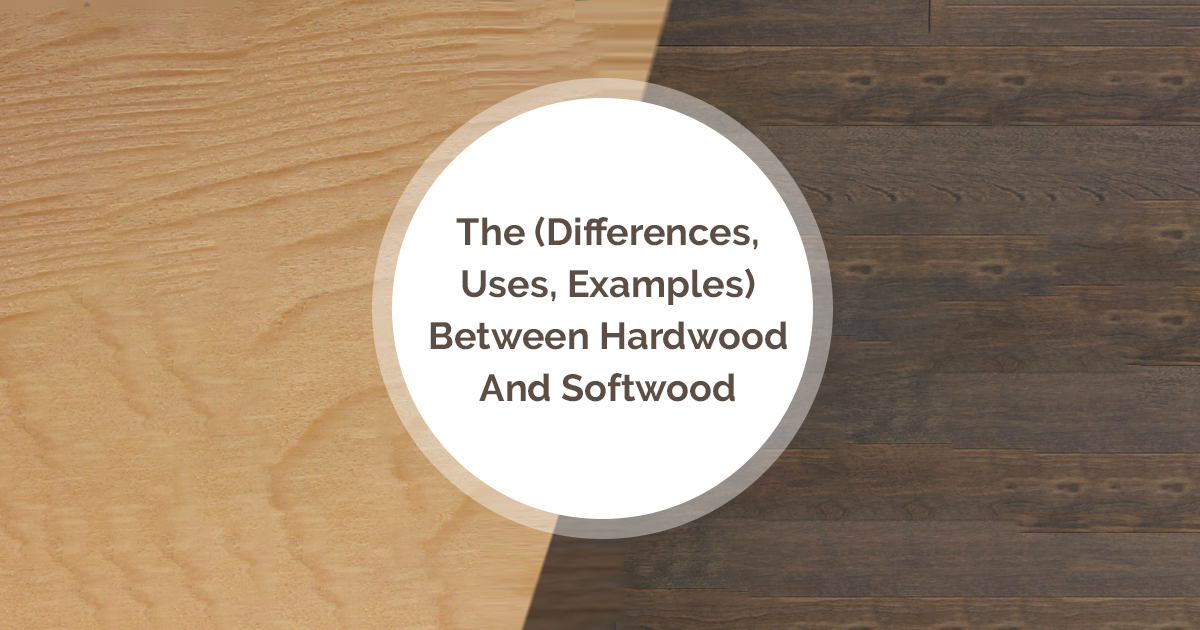 The Differences Between Hardwood And Softwood