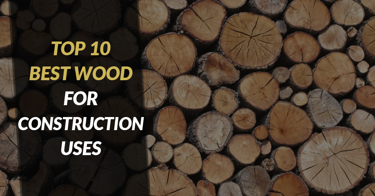 Top 10 Best Wood For Construction Uses