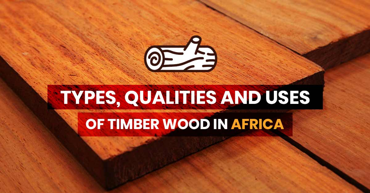 Types of Timber Wood
