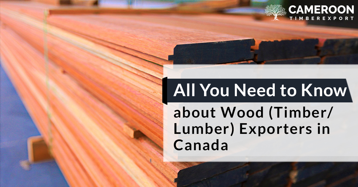 Know about Wood (Timber/Lumber) Exporters in Canada