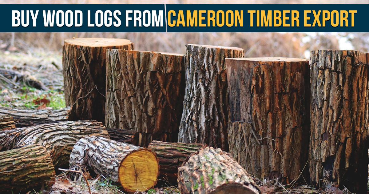 Buy wood logs