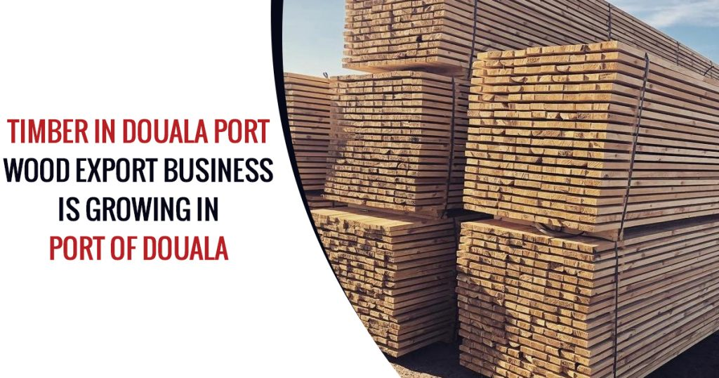 Timber in Douala Port
