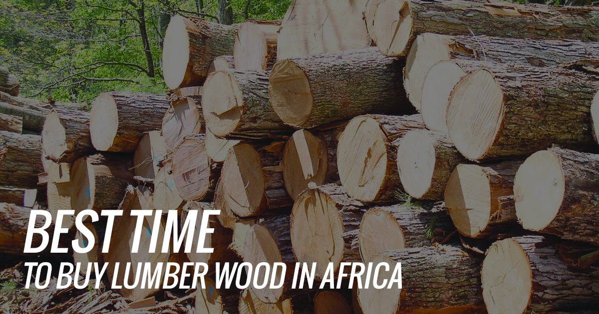 Best Time to Buy Lumber Wood in Africa