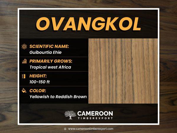 ovangkol wood logs