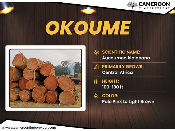 okoume wood logs