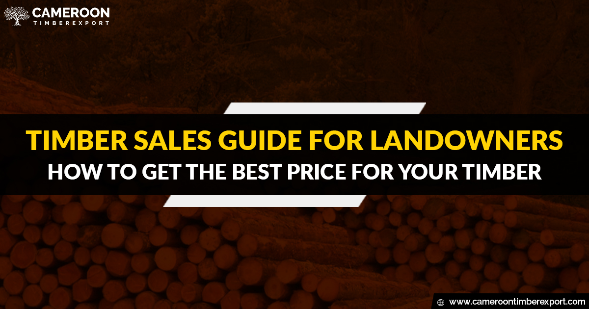 timber sales guide