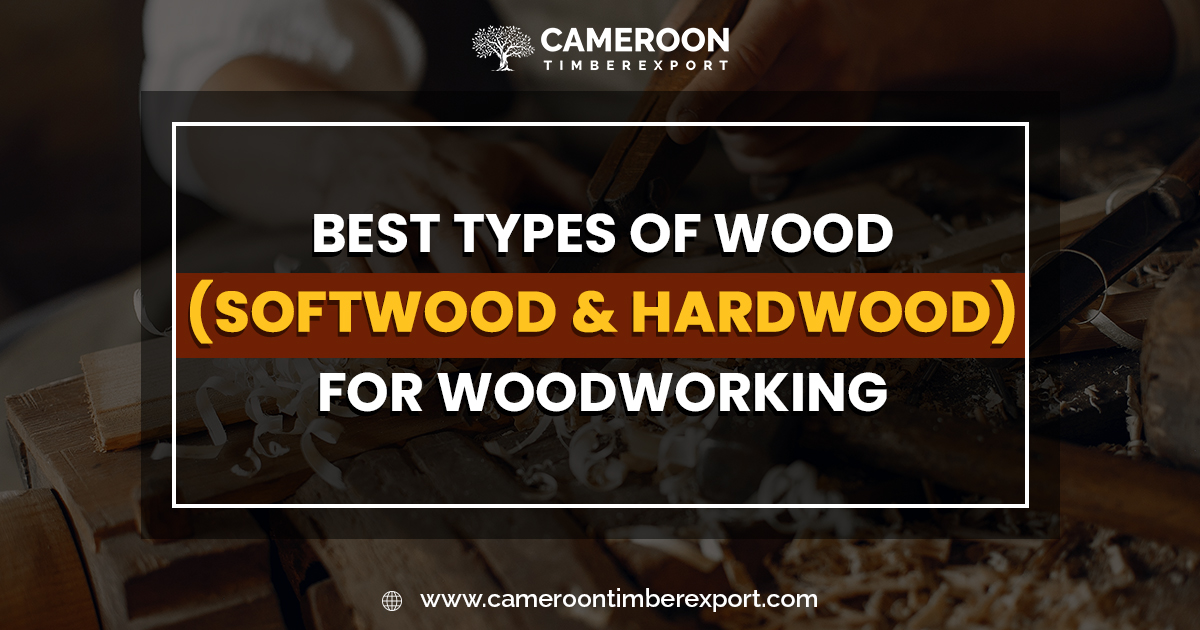 best types of wood for woodworking