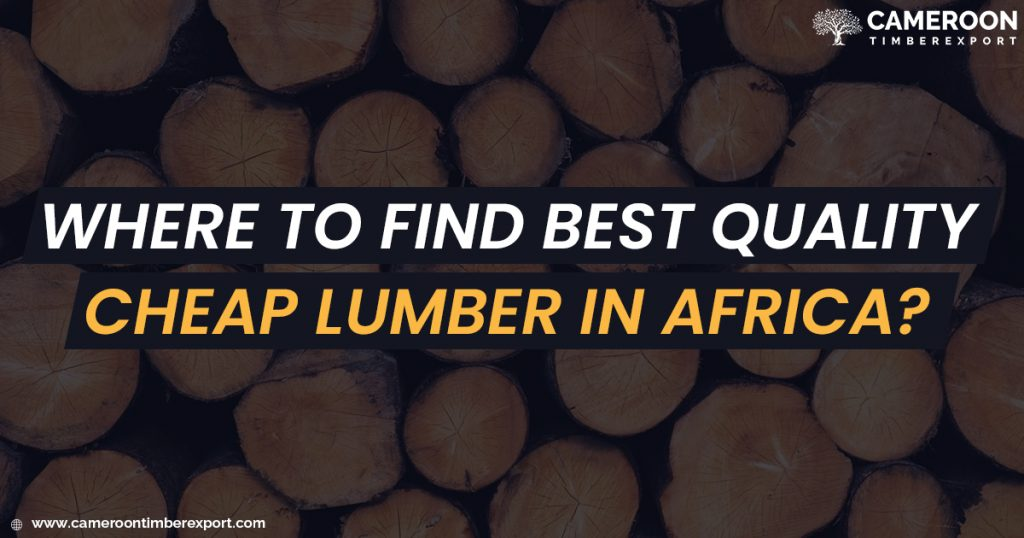 where to find best quality cheap lumber in Africa