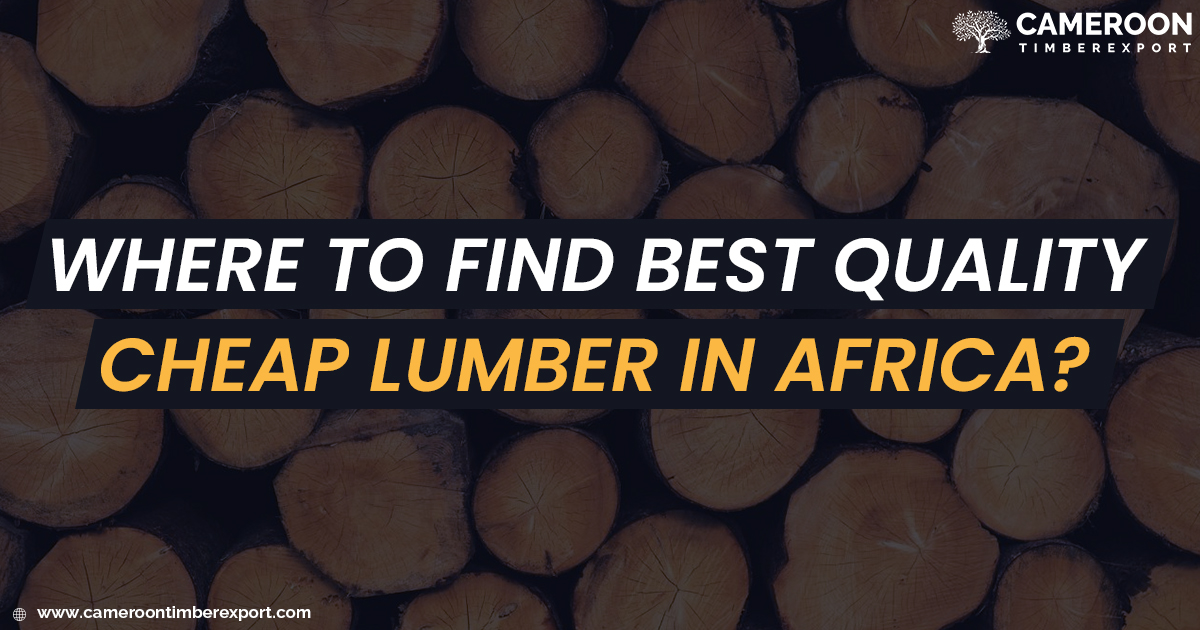 where to find cheap lumber