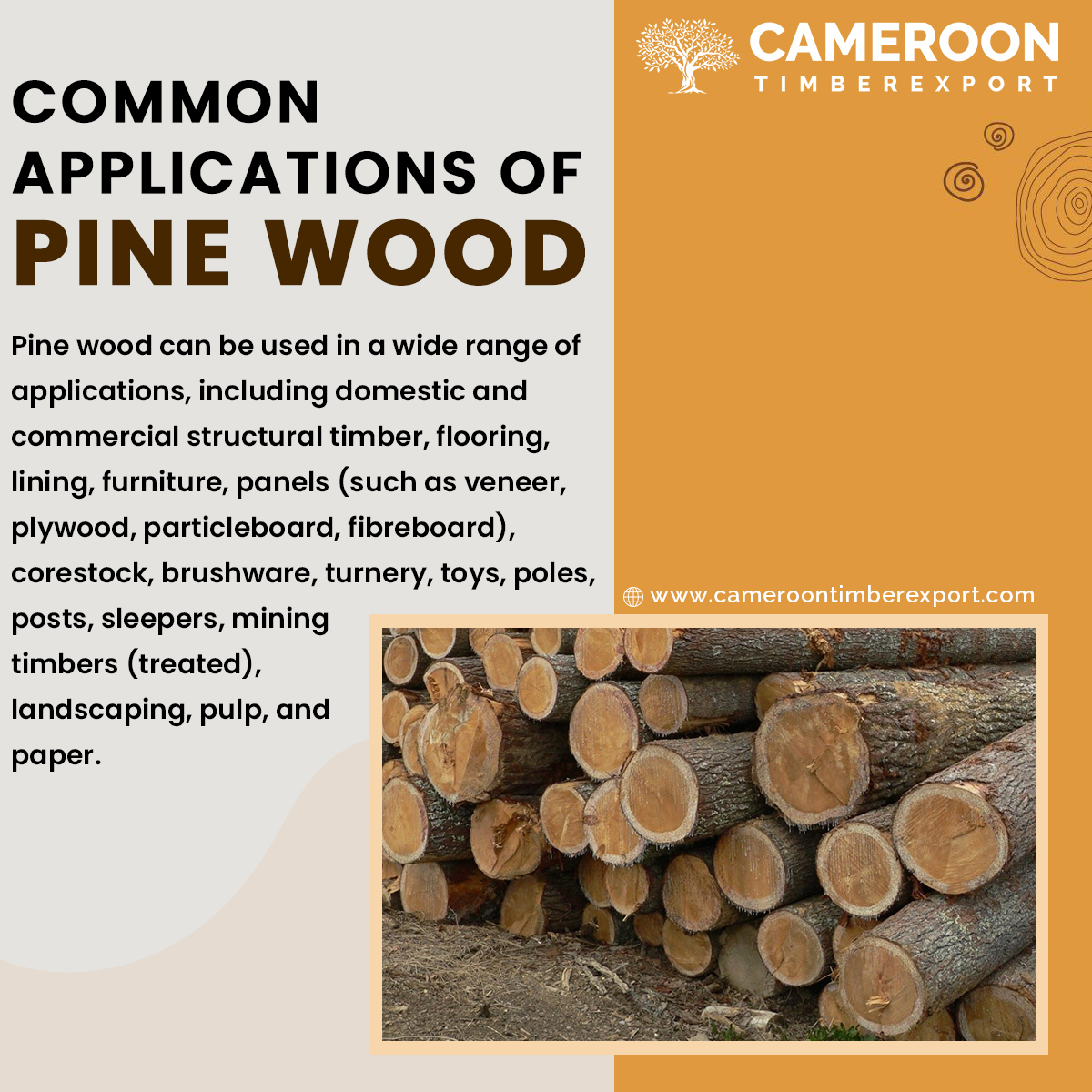common uses of pine wood
