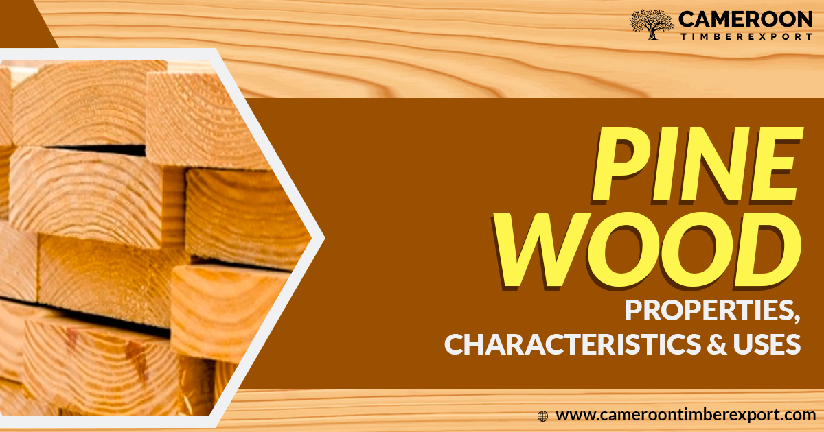 pine wood properties and uses