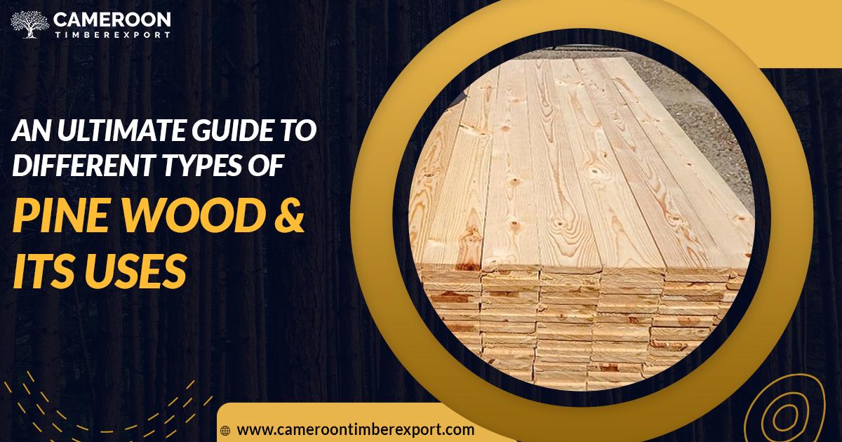 types of pine wood