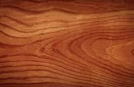 douglas fir softwood