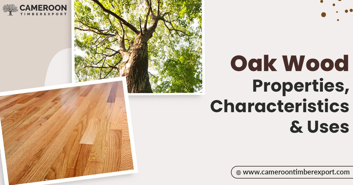 oak wood properties characteristics