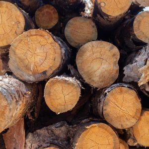 movingui wood logs